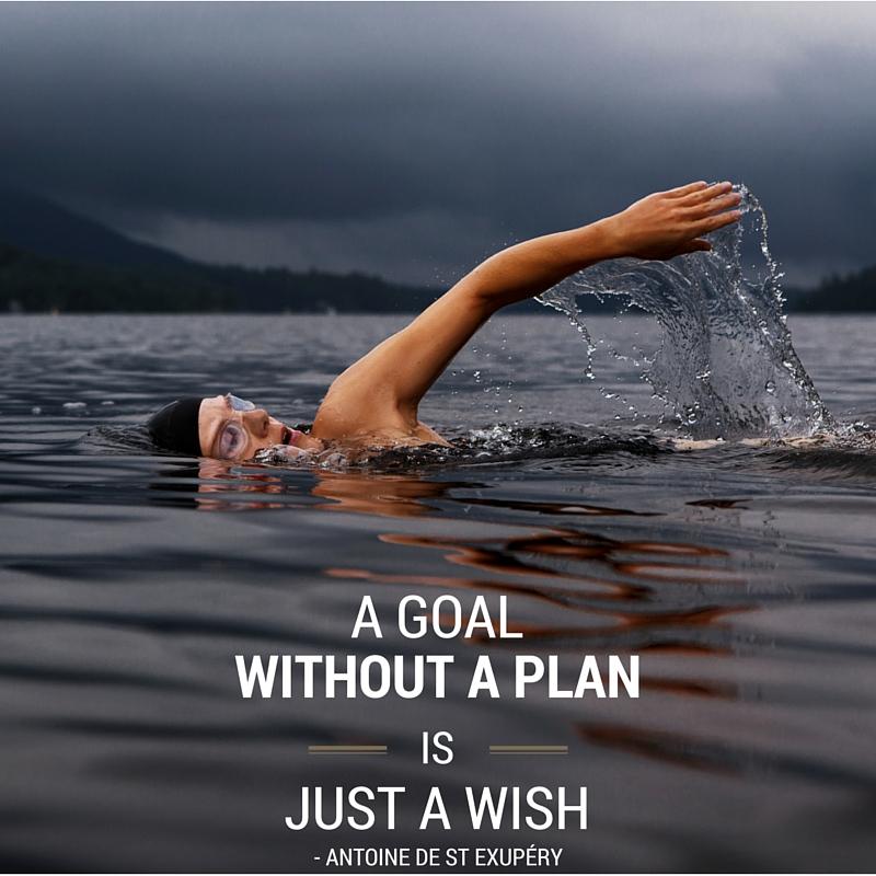 Money Quote : Goal no plan wish
