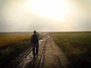 On the road to Financial Independence / (David Marcu)